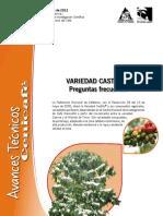 variedad castillo.pdf