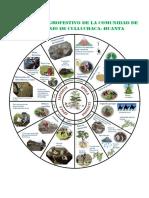 Calendario Agrofestivo de La Comunidad de San Antonio de Culluchaca