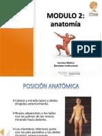 modulo 2 anatomia - primer respondiente