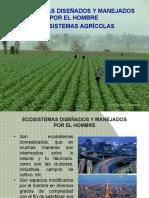 Ecosistema Agrícola(11)