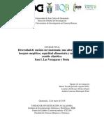 Informe Encinos a.v B.v. y Petén