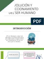 Evolución y Perfeccionamiento Del Ser Humano