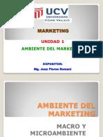 Ambiente Del Marketing