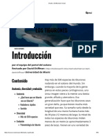 Sharks _ Smithsonian Ocean