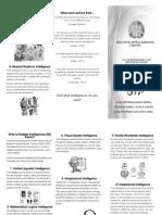 Multiple Intelligences Brochure