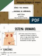 RIÑONES Y VIAS URINARIAS.pptx