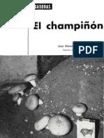 hdma-cultivo-agaricus