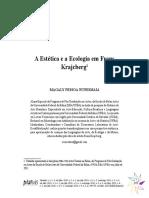 A estética e a ecologia em Frans Krajcberg