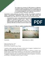Campo Di Papaveri Di Monet