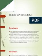 Clase 1. Fiebre Carbonosa