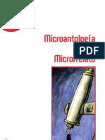 Micro r Relatos