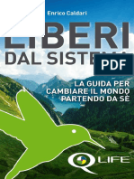 LiberidalSistema eBook v01