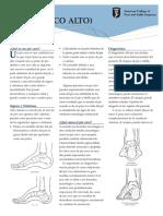 carvus-foot_sp.pdf