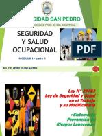 MOD01-SST-Ley SST 29783-USP 2018.pdf