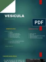 DIAGNOSTICO POR IMAGENES DE LA VESICULA