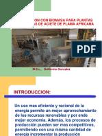 Efciciencia Enregetica Biomasa Guillermo Gonzales