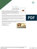 Carrapatos - Parasitas e Zoonoses - Cães - Bayer Pet2
