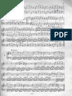 Duvernoy pag.2.pdf