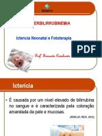 Aula 8 - Hiperbilirrubinemia