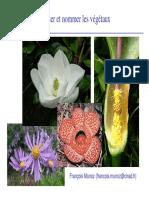 2-2. Systématique taxonomie.pdf