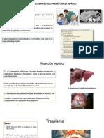 tratamiento tumores hepaticos