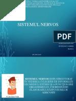 Ppt Sistem Nervos