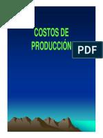 010 - COSTOS PRODUCCION