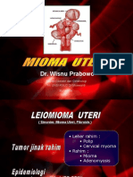 bulat Mioma Uteri