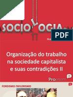 Organizacao Do Trabalho Nas Sociedades Capitalistas e Suas Contradicoes