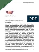 12-Gestión Del Riesgo