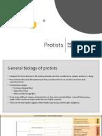 Chapter 10 Protist