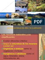 RR.NN.-PERU.pptx