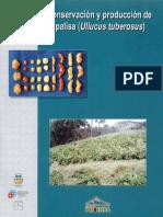 Conservacion y Produccion Del Cultivo de La Papalisa
