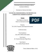 55519820.pdf