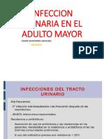 1. INFECIONES URINARIAS EN EL ADULTO MAYOR 2018.pptx