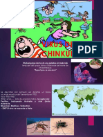 Virus Del Chinkungunya