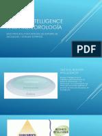 Business Intelligence Para Meteorología - Presentación
