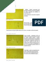 Manual Para Inspeção