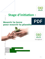 Chaimae El Moussaoui Stage d'Initiation VERT