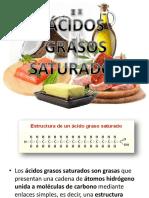 ÁCIDOS GRASOS SATURADOS.pptx