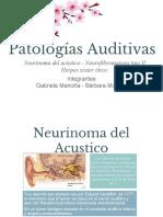 audio ppt.pdf