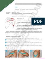 Vendaje Neuromuscular Manual Aplicaciones Practicas 57