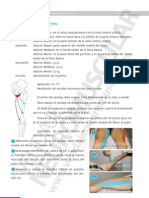 Vendaje Neuromuscular Manual Aplicaciones Practicas 78