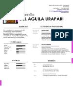 Cv Fiorella Del Aguila