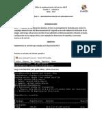 Informe de Implementación del servicio de DHCP