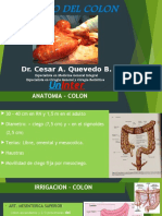 Volvulo Del Colon Dr. Cesar Quevedo