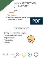 Restriction enzyme Presentation