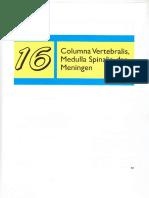 Hernia Inguinalis Febri(2)