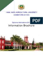Diploma Brochure 2018