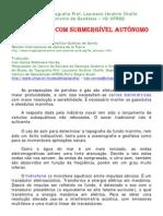 Batimetria Com Submergivel Autonomo